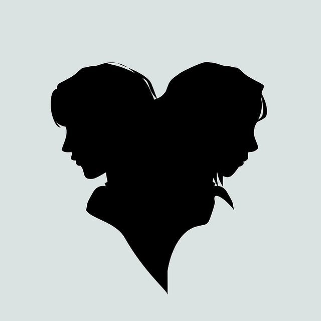 A silhouette of two heads back-to-back.
